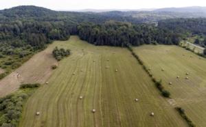 L'agriculture urbaine